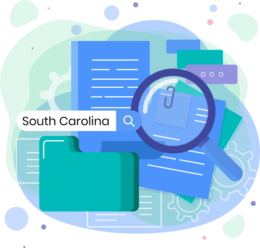 South Carolina resources icon